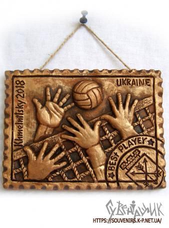 Плакетки для волейболу